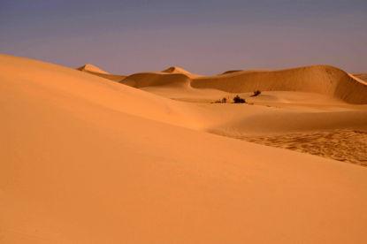 Picture of Desert Adventure